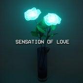 Sensation Of Love (Radio Edit) de Andrew A