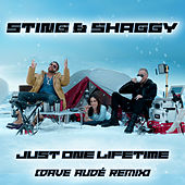 Just One Lifetime (Dave Audé Remix) von Sting
