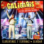 En Vivo Auditorio Nacional de Los Caligaris