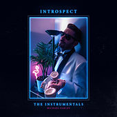 Introspect (The Instrumentals) by Michael Oakley