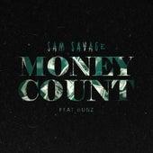 Money Counts von Sam Savage