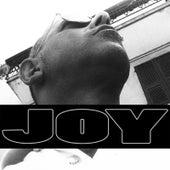 Vuoi by Joy