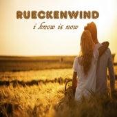 I Know It's Now by Rueckenwind