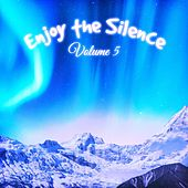 Enjoy the Silence, Vol. 5 by Various Artists