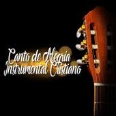 Canto de Alegría (Instrumental Cristiano) de Various Artists