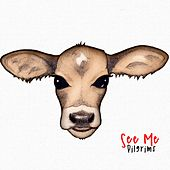 See Me EP by The Pilgrims