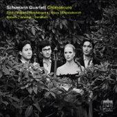 Chiaroscuro de Schumann Quartett