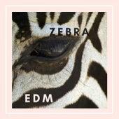 Zebra Edm von Various Artists