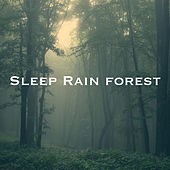 Sleep Rain forest de Various Artists