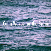 Calm Waves for the Brain de Various Artists