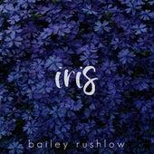 Iris (Acoustic) von Bailey Rushlow
