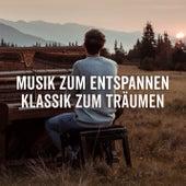 Musik zum Entspannen - Klassik zum Träumen de Various Artists