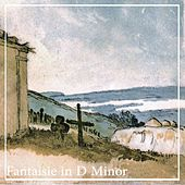Fantaisie in D Minor, Ol. 2 by David Ennarqua