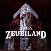Zeubiland, Pt. 3 by Medusa