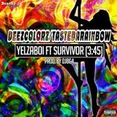 Deezcolorz / Tastedarainbow de Yelzaboi