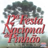 12° Festa Nacional do Pinhão de Various Artists