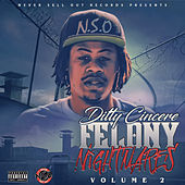 Felony Nightmares Volume 2 by Ditty Cincere