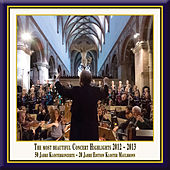 Anniversary Series, Vol. 13: The Most Beautiful Concert Highlights from Maulbronn Monastery, 2012-2013 (Live) von Various Artists