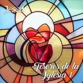 Tesoros de la Iglesia 1 by Jésed