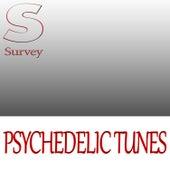 Psychedelic Tunes von Various