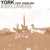 Iceflowers (Mind One vs Infra Edit) von York