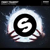 Oracle (TNT Remix) by Timmy Trumpet