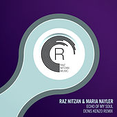 Echo of My Soul (Denis Kenzo Remix) von Raz Nitzan