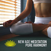 New Age Meditation Pure Harmony de Reiki