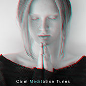 Calm Meditation Tunes: 15 Gentle New Age Songs for a Deep Meditation Practice von Lullabies for Deep Meditation