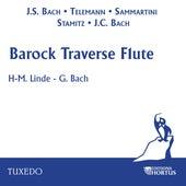 Barock Traverse Flute de Hans-Martin Linde