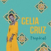Tropical de Celia Cruz