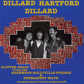 Glitter Grass From The Nashwood Hollyville Strings / Permanent Wave by Dillard Hartford Dillard