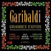 Grandes Éxitos 2002 by Garibaldi