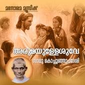 Arumayullesuve de K. S. Chithra