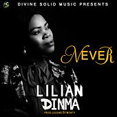 Never by Lilian Dinma