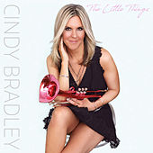 The Little Things by Cindy Bradley