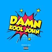 Damn de Kool John