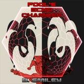 Fool's Echo Chamber von B.Smiley
