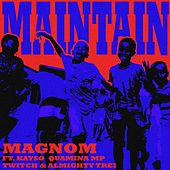 Maintain by Magnom