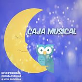 Caja Musical de Various Artists