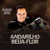 Andarilho Beija Flor von Flavio José