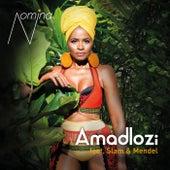 Amadlozi by Nomina