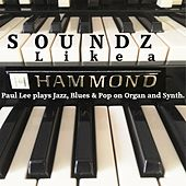 Soundz Like a Hammond by Paul Lee