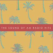 '60s: The Sound of AM Radio Hits! by Various Artists