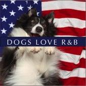Dogs Love R&B von Various Artists