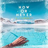 Now or Never von The Colourist