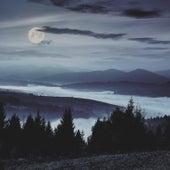 Nature's Cradle de Sleepy Night Music