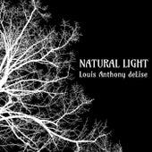 Natural Light de Louis Anthony deLise