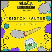 Spliff Tales (2019 Remaster) de Triston Palmer