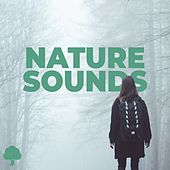 Nature Sounds von Naturemen